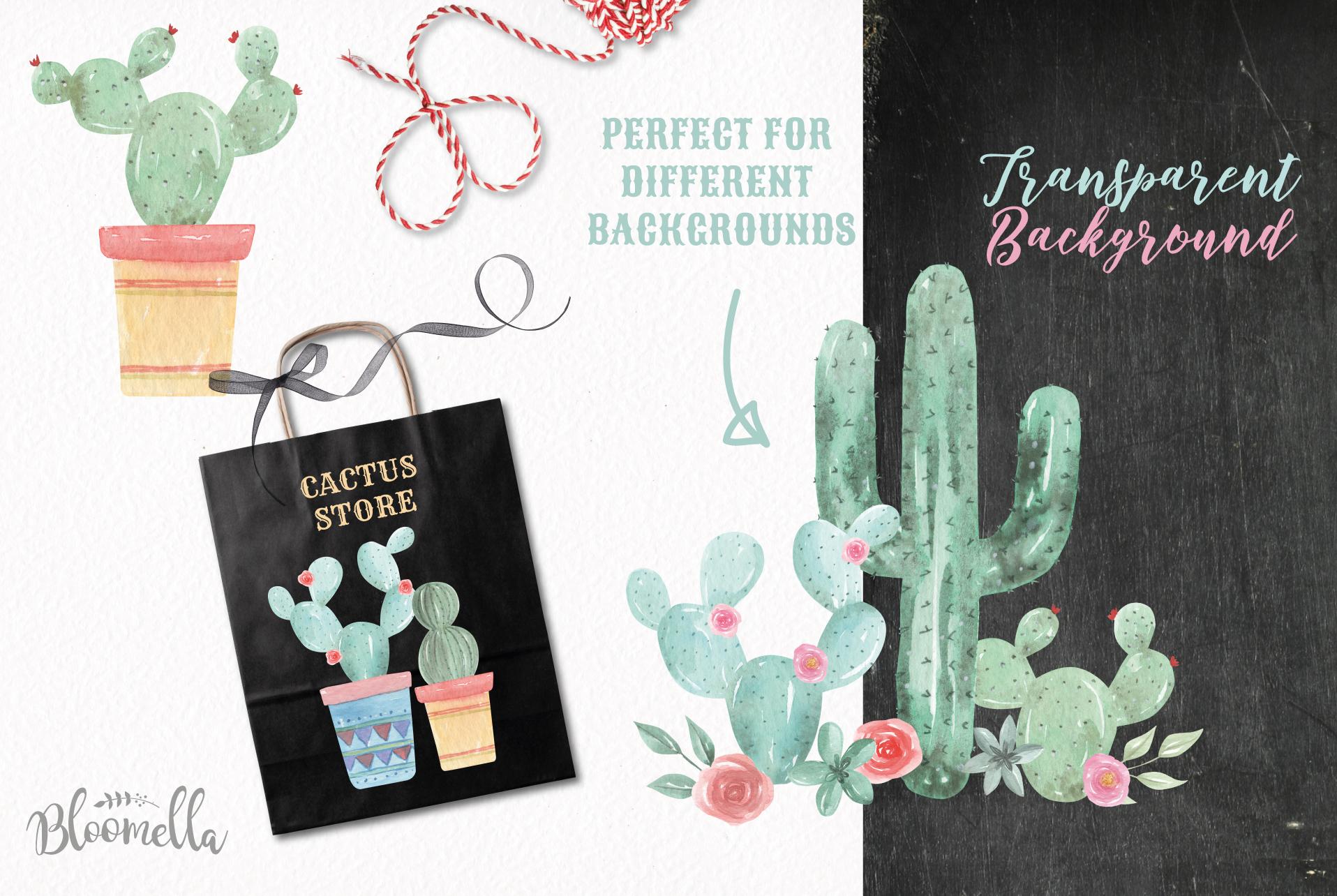 Watercolor Cactus Clipart Bouquets Arrangements Flowers Pink example image 5