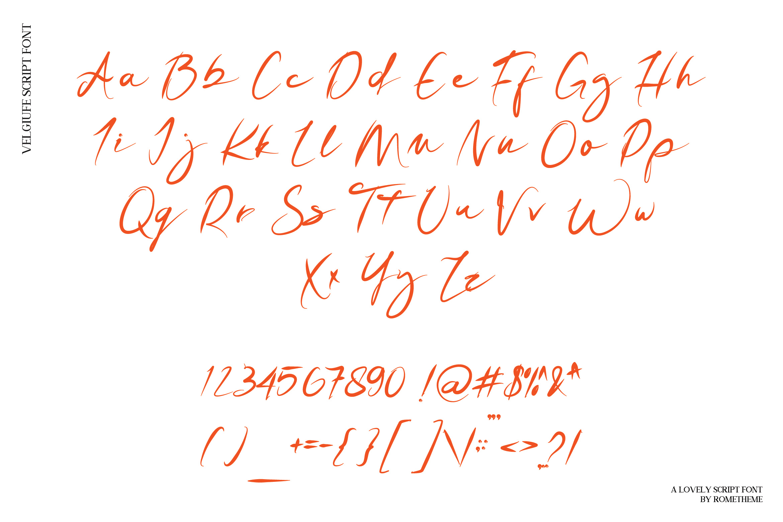Velguife Script Font example image 6