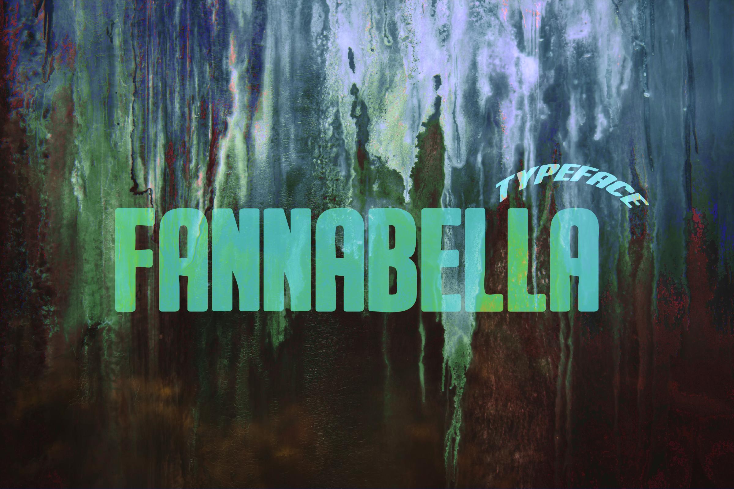 FannaBella Typeface example image 1