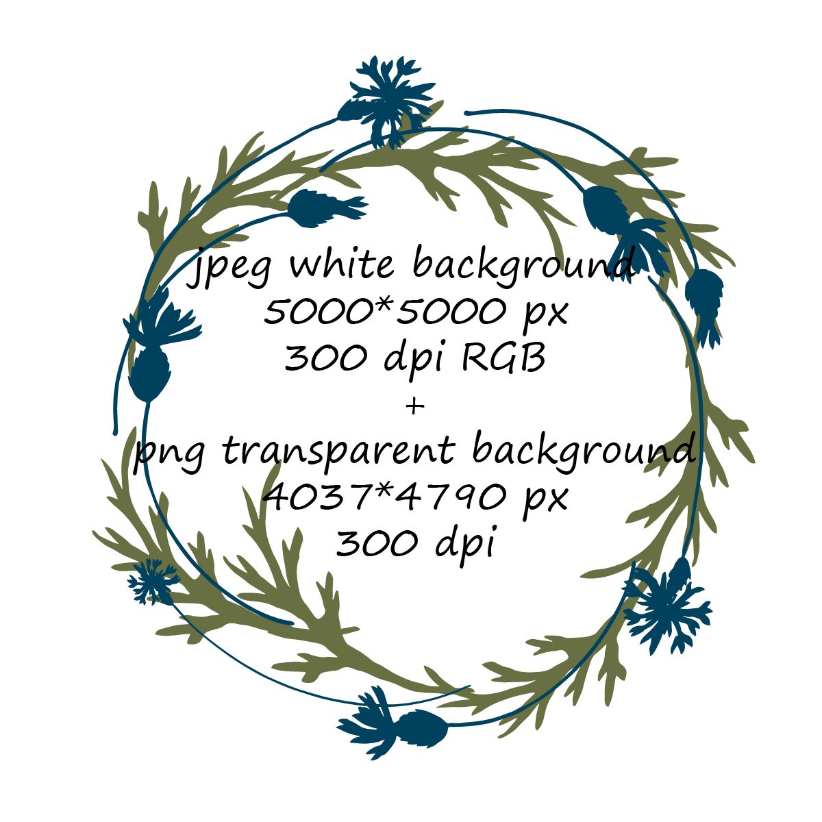 Cornflowers and Leaves Wreaths Clipart example image 4
