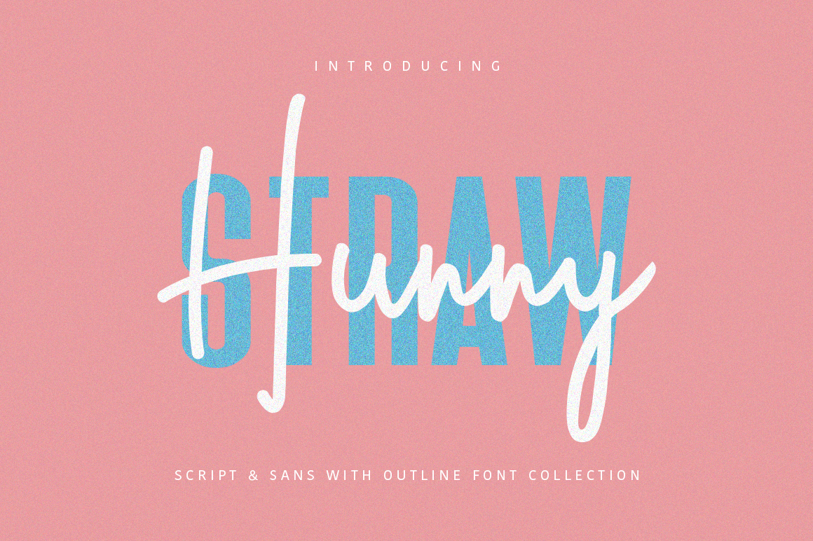 Hunny Straw Font Collection example image 1