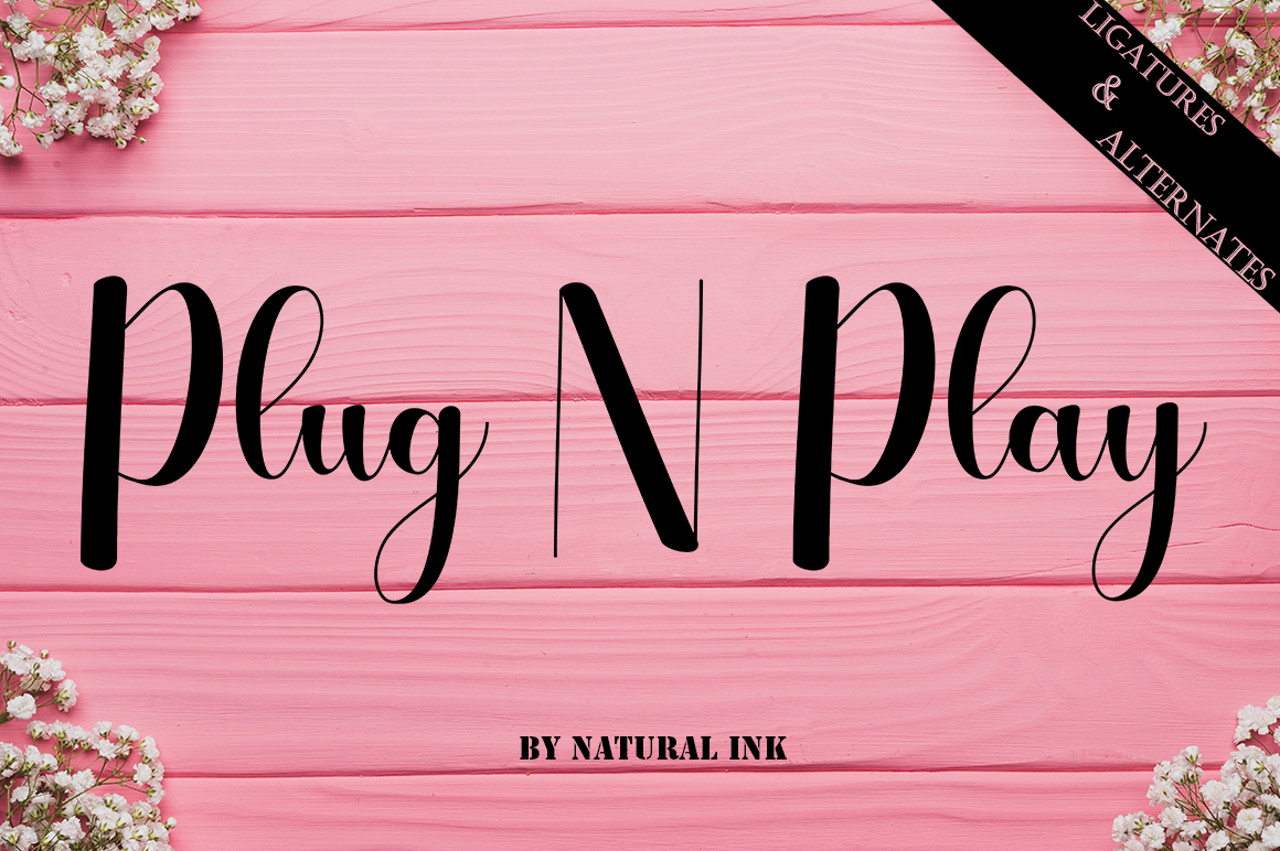 Plug N Play example image 1