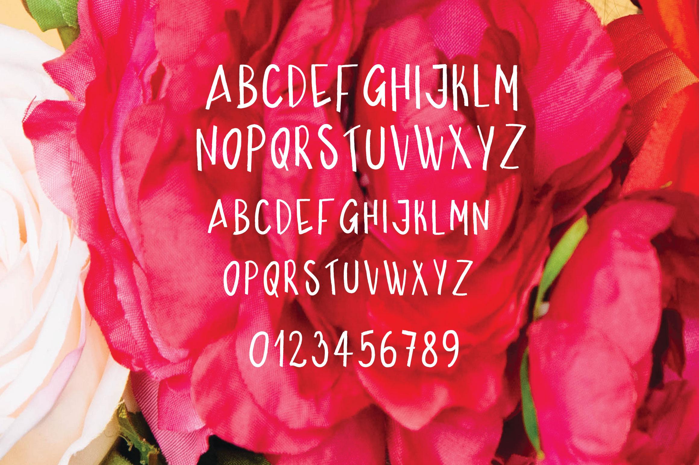Bolden | Sans Serif Font example image 2