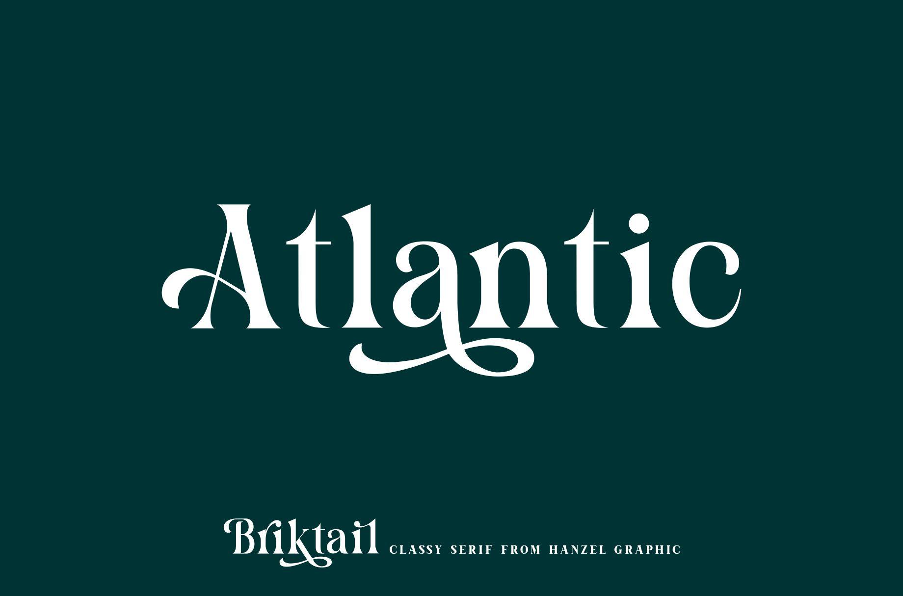 Briktail//Modern Serif Font example image 8