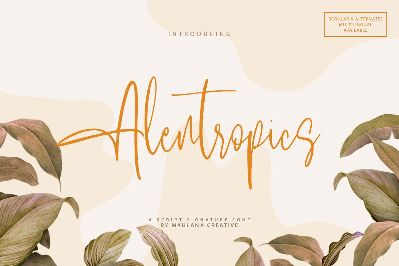 Alentropics Script Signature Font example image 1