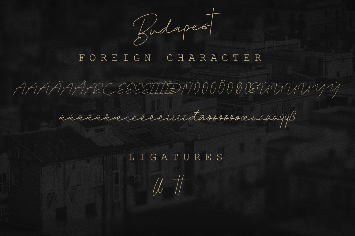 Budapest Script Font - 6 Fonts example image 3