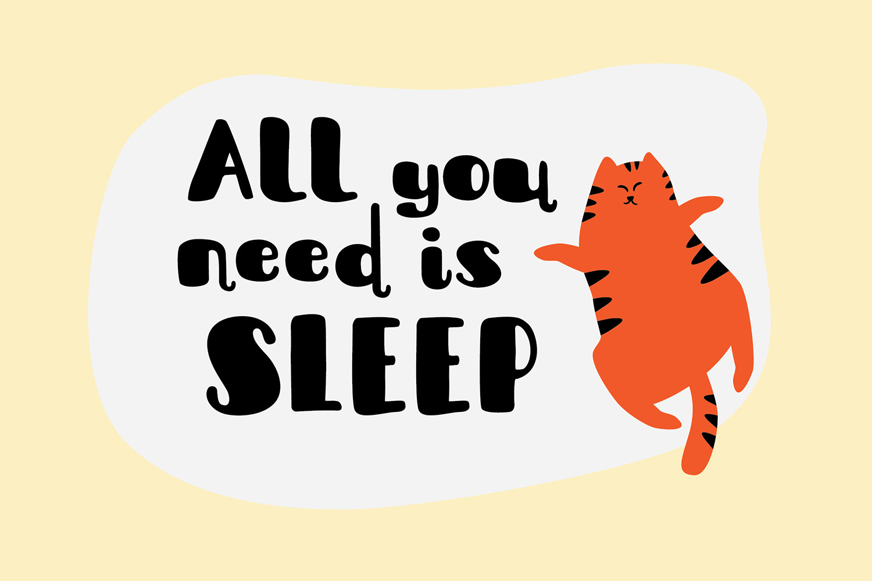 Sleepy Fat Cat example image 7