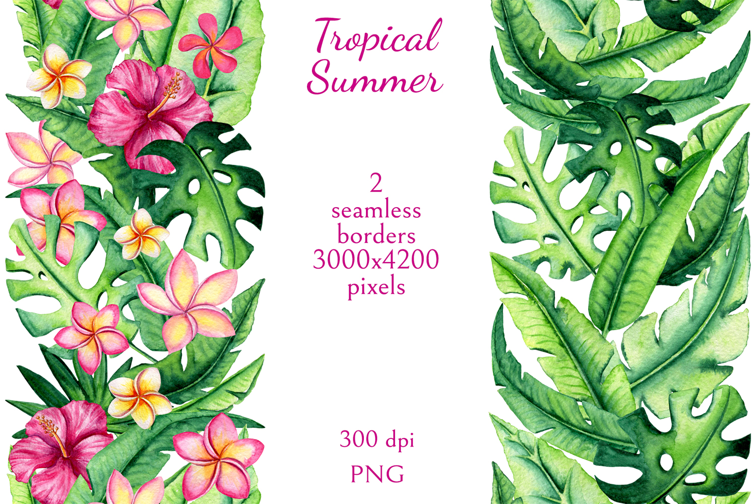 Tropical Summer example image 6