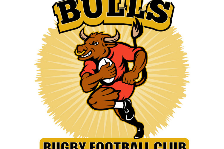 Bull playing rugby running with ball example image 1