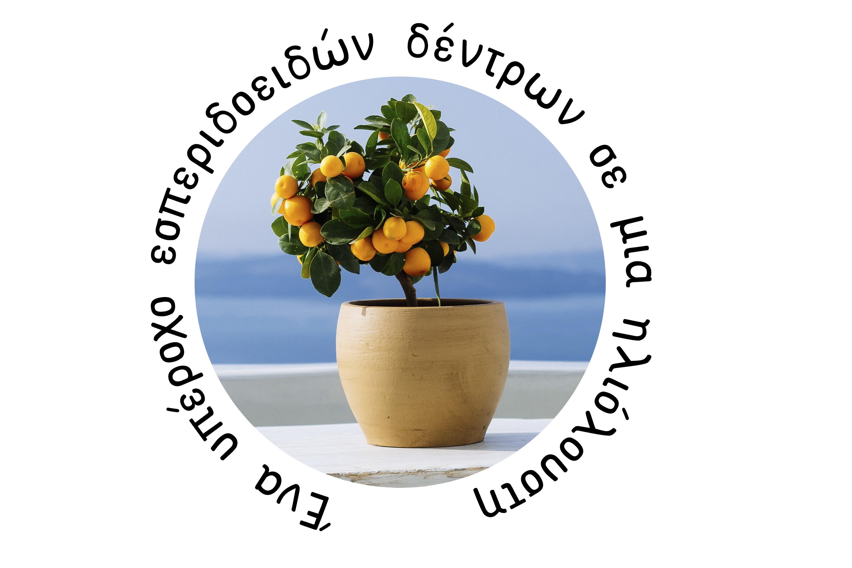 ATHENA SANS SERIF FONT - Greek, Cyrillic and Latin Typeface example image 3