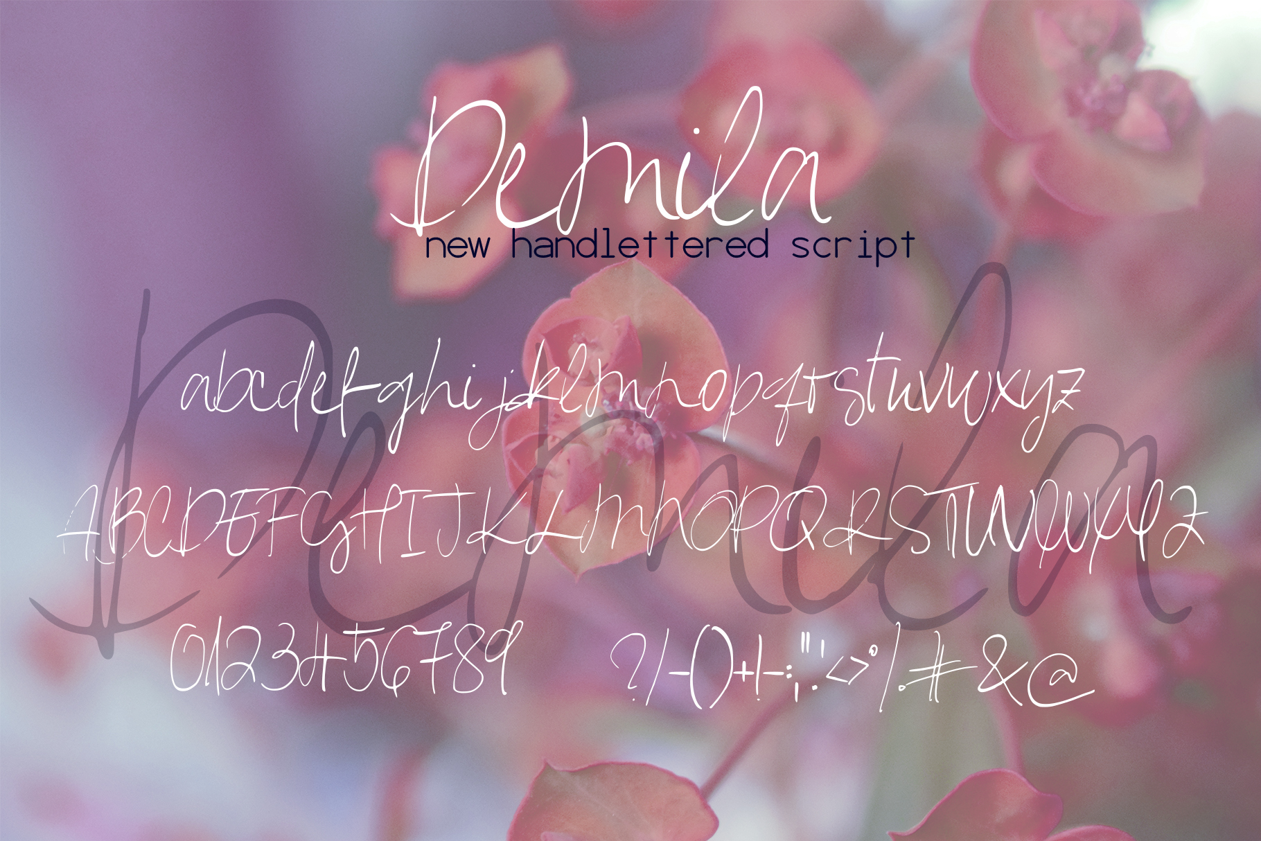 Demila Font example image 7