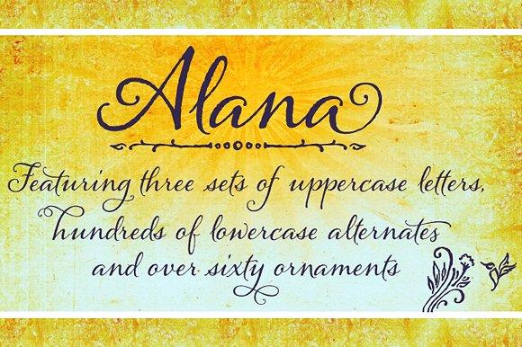 Alana Regular example image 29