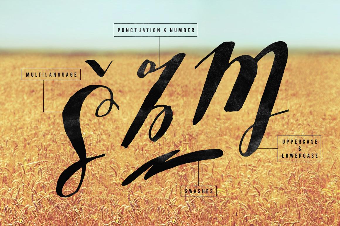 Sottafles Typeface + Swashes example image 5