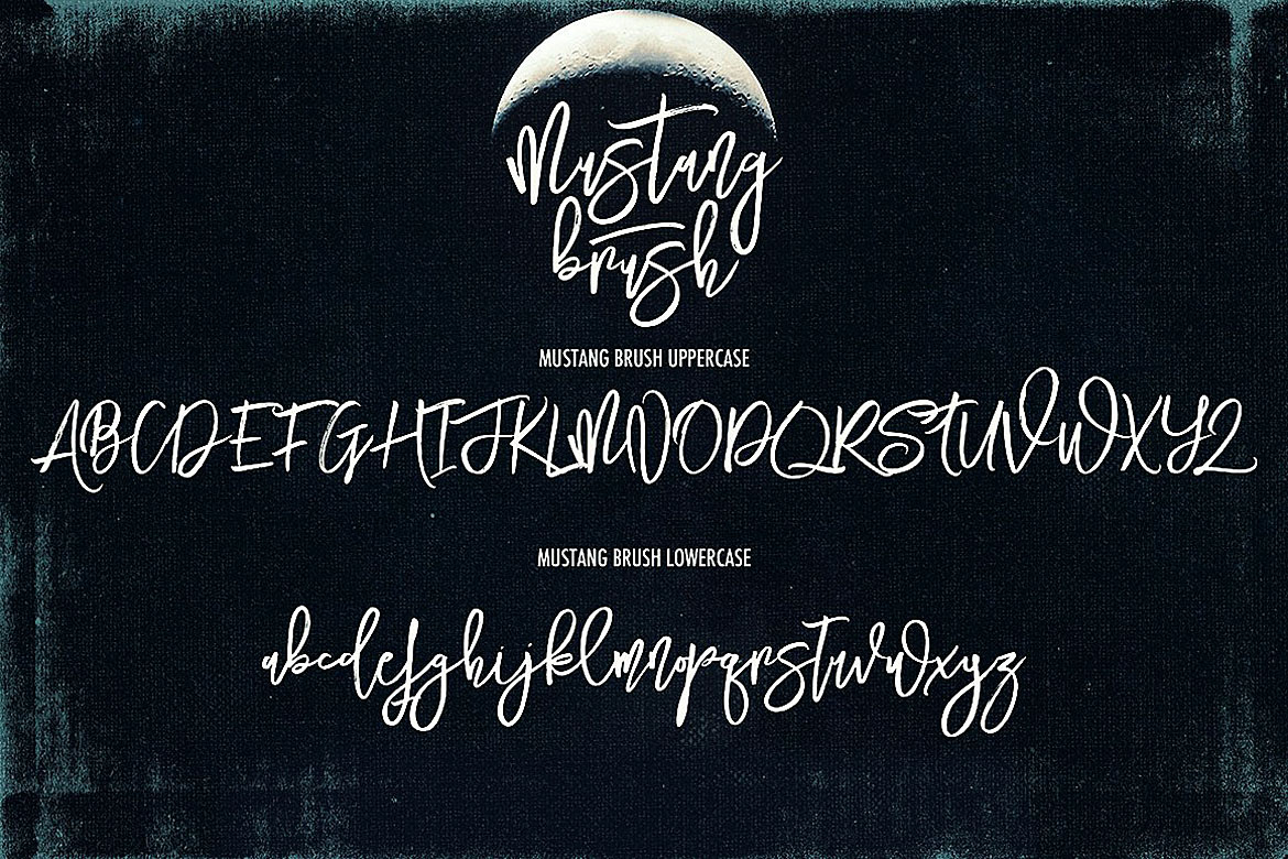 Mustang Brush Font example image 3