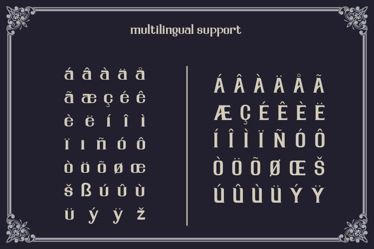 Serdane Typeface & Vector example image 3