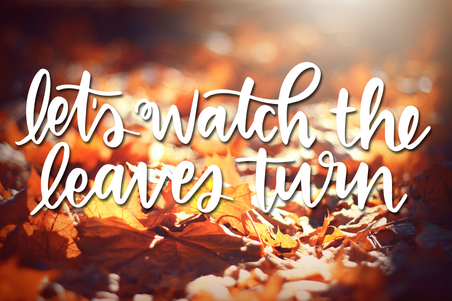 Fall Phrases Symbols Font example image 11