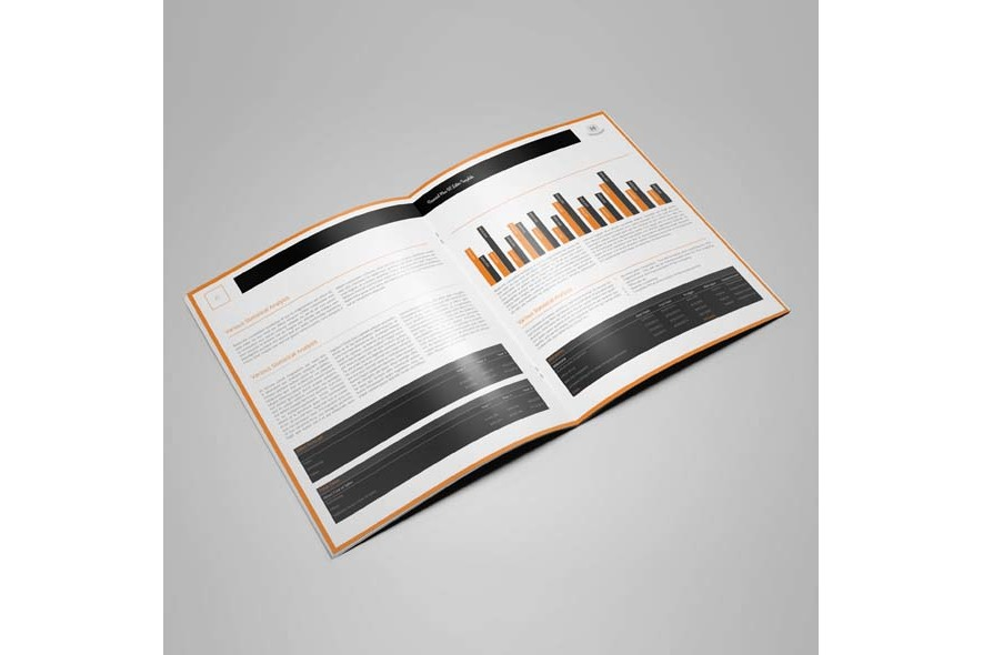 Financial Plan US Letter Template example image 4