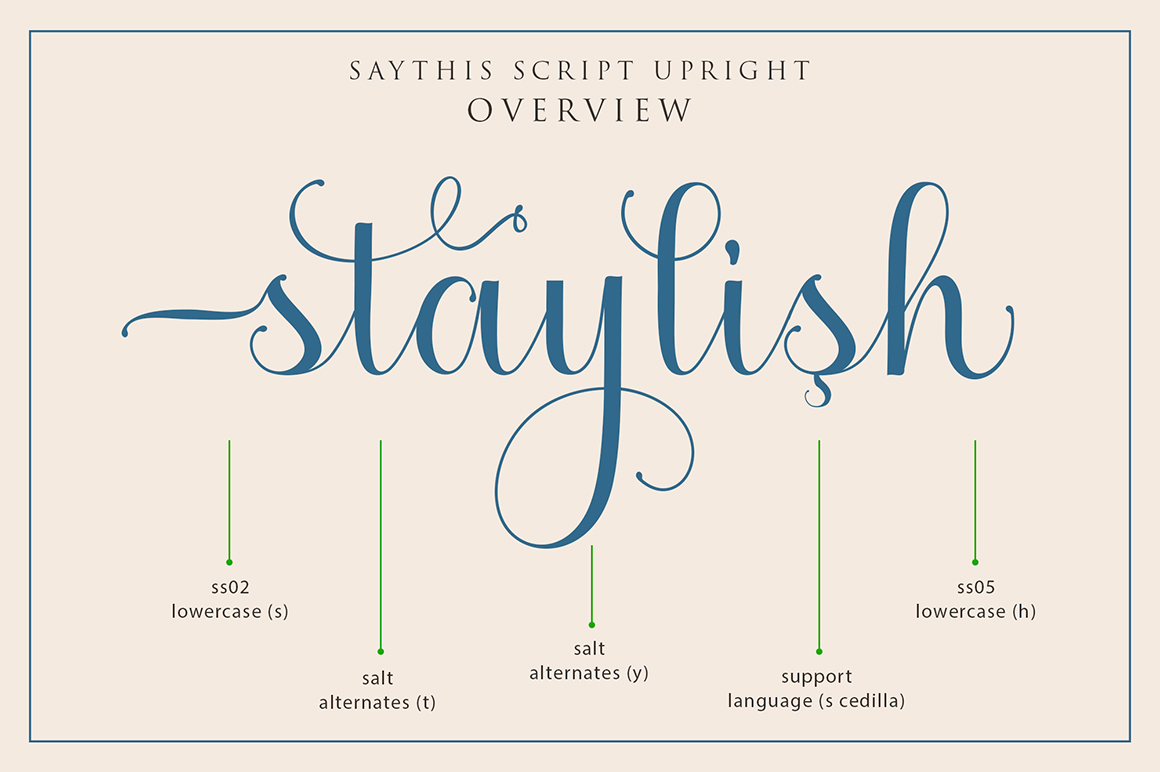 Saythis Script Upright example image 8