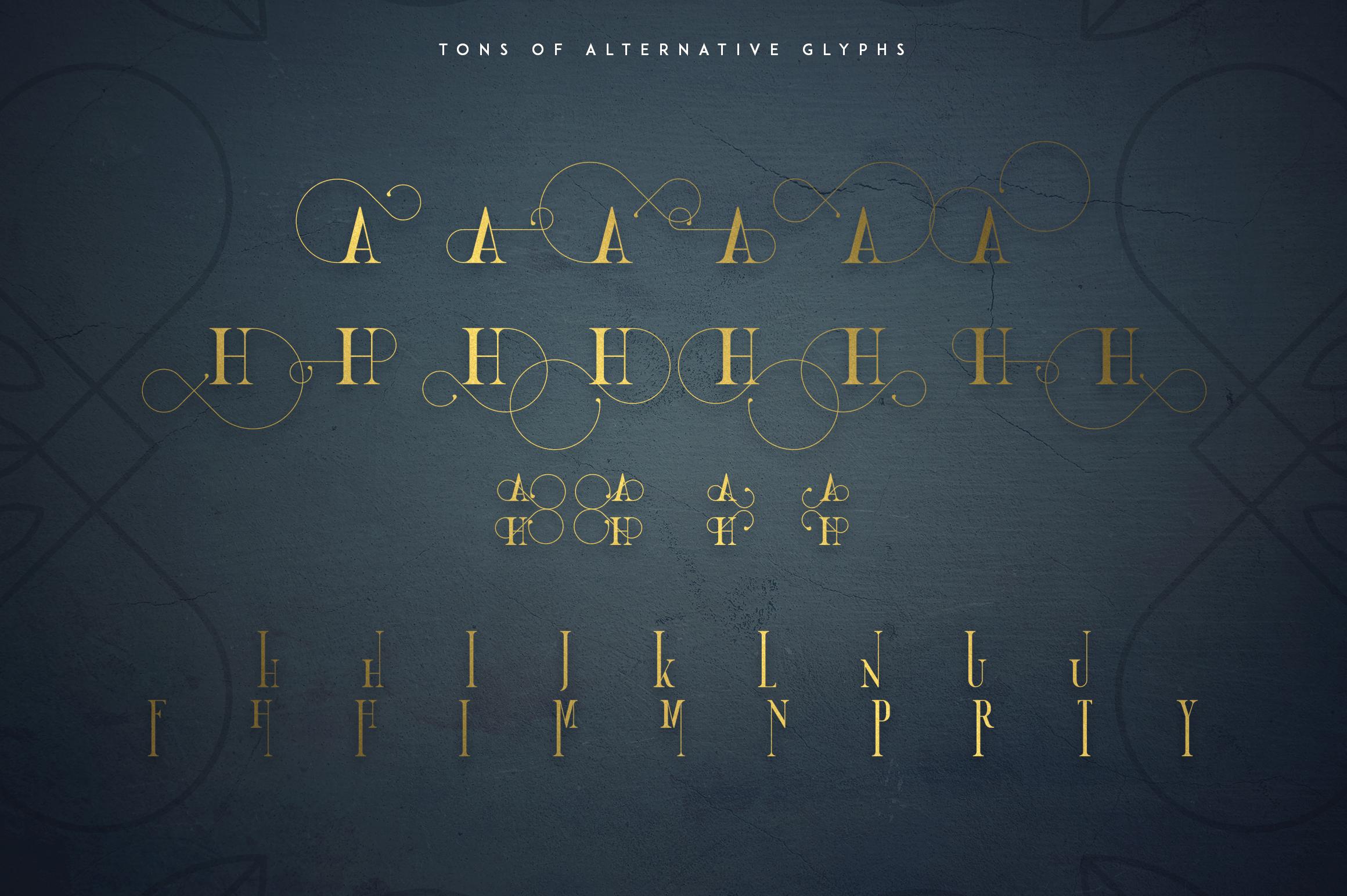 Golden Bird Serif font Cool Extras example image 9