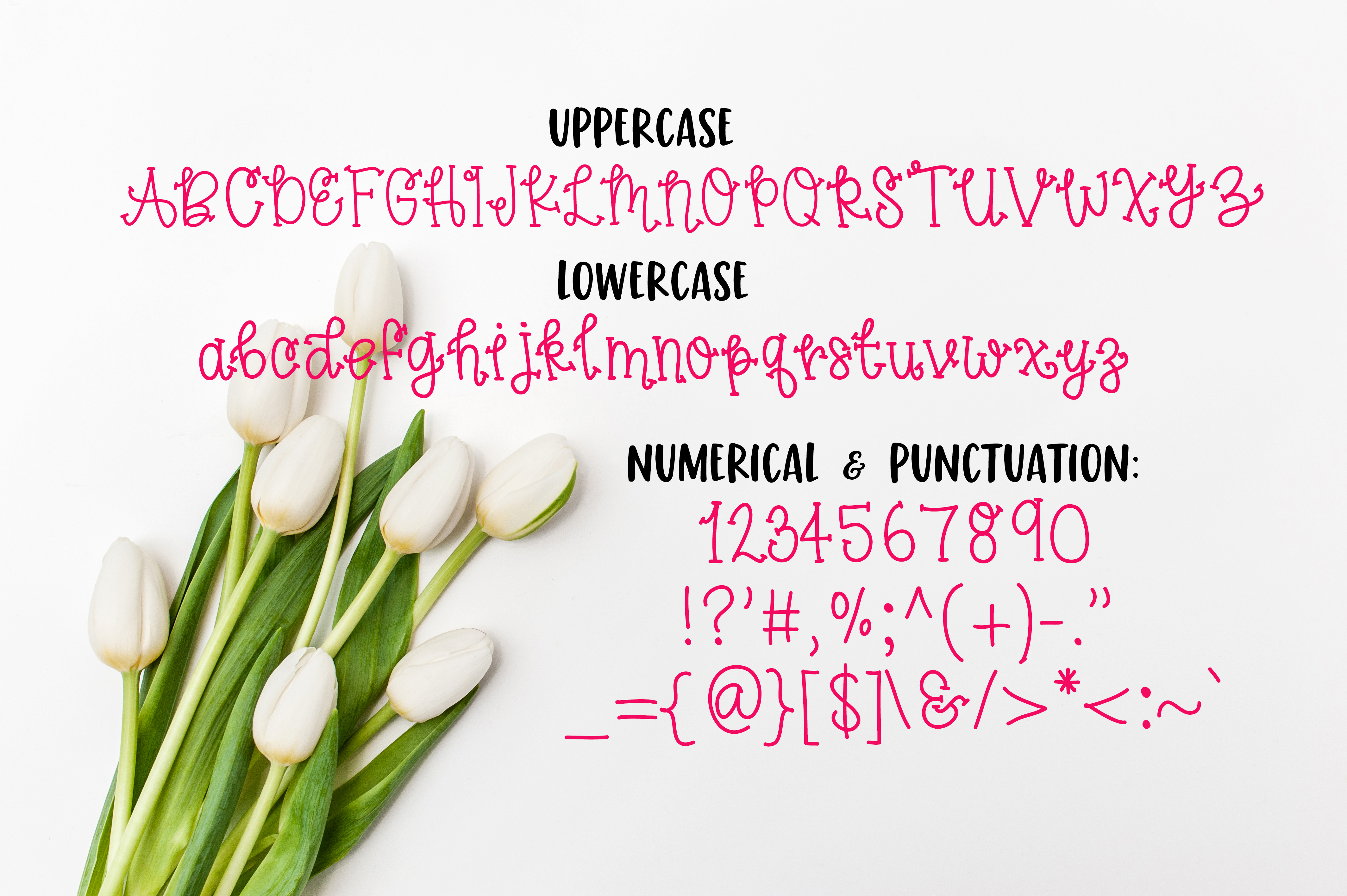 Spring Tulips Font - A Fun Hand Lettered Serif Font example image 3