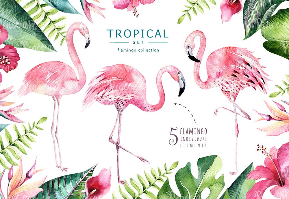 Tropical set II. Flamingo collection example image 3