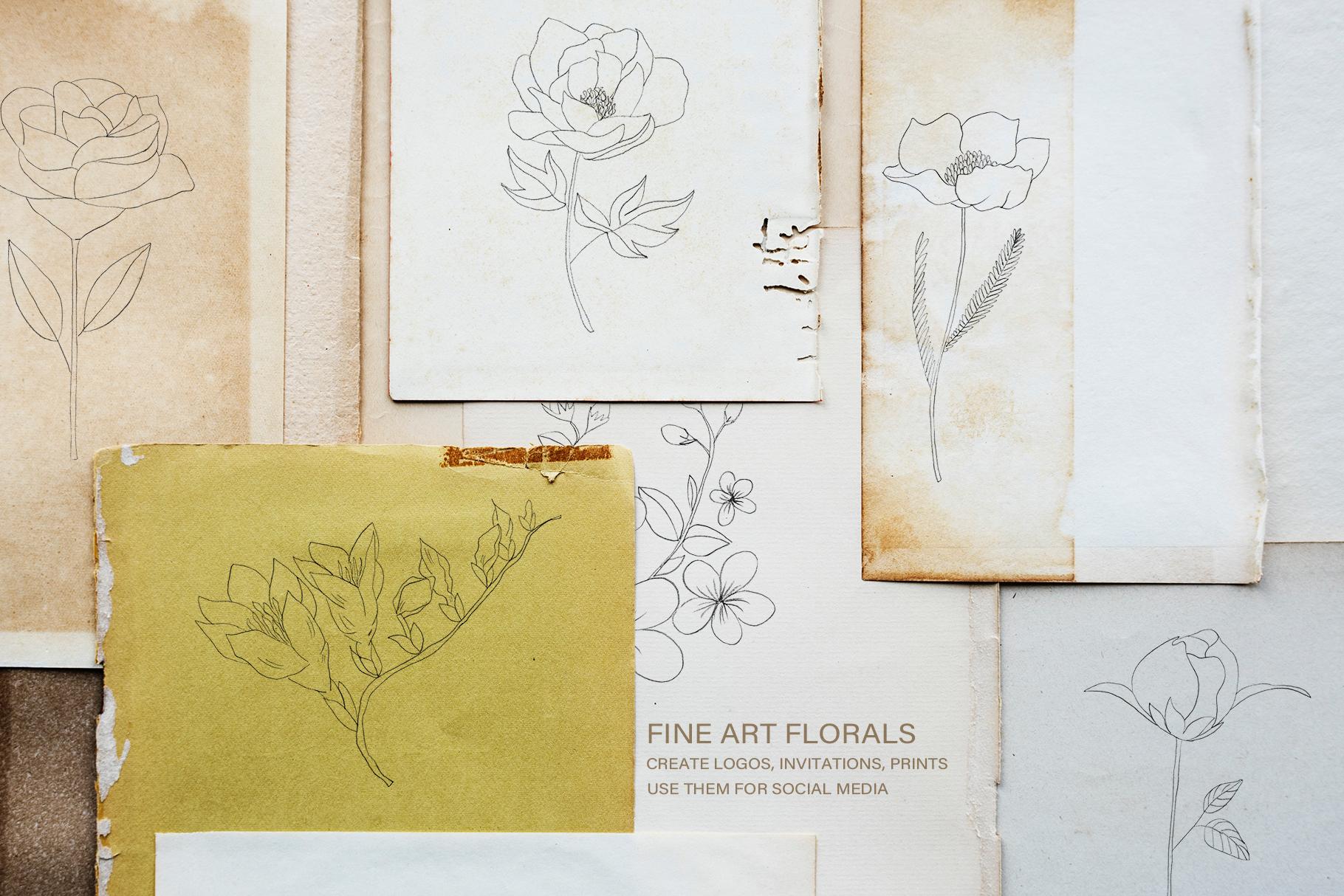 Fine Art Florals - Pencil Sketches example image 2