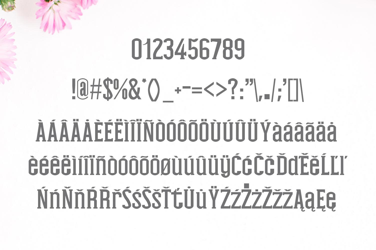 Nasya Slab Serif 4 Font Family Pack example image 3