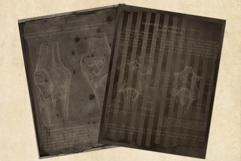 Dark Grunge Anatomy Notebook Paper example image 2