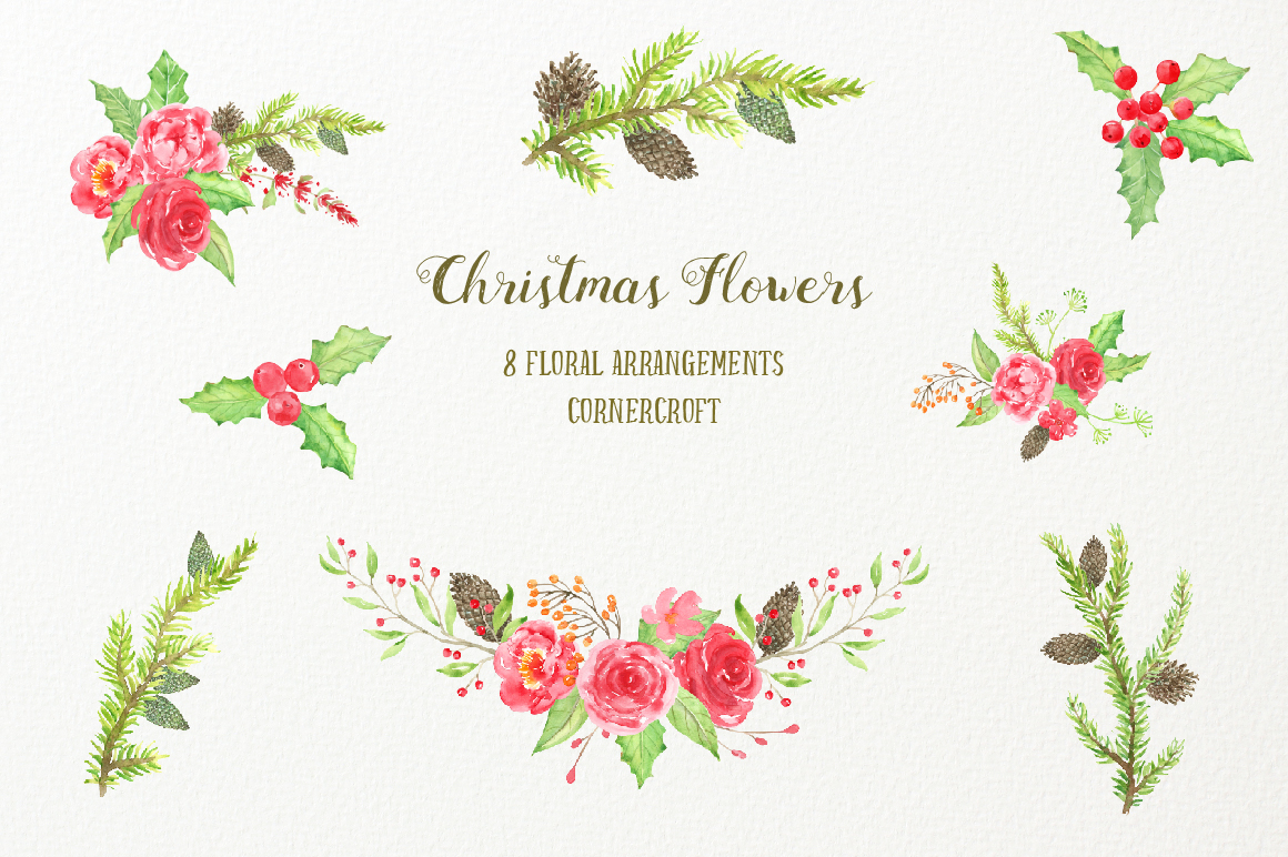 Watercolor Clipart Christmas Flowers example image 2