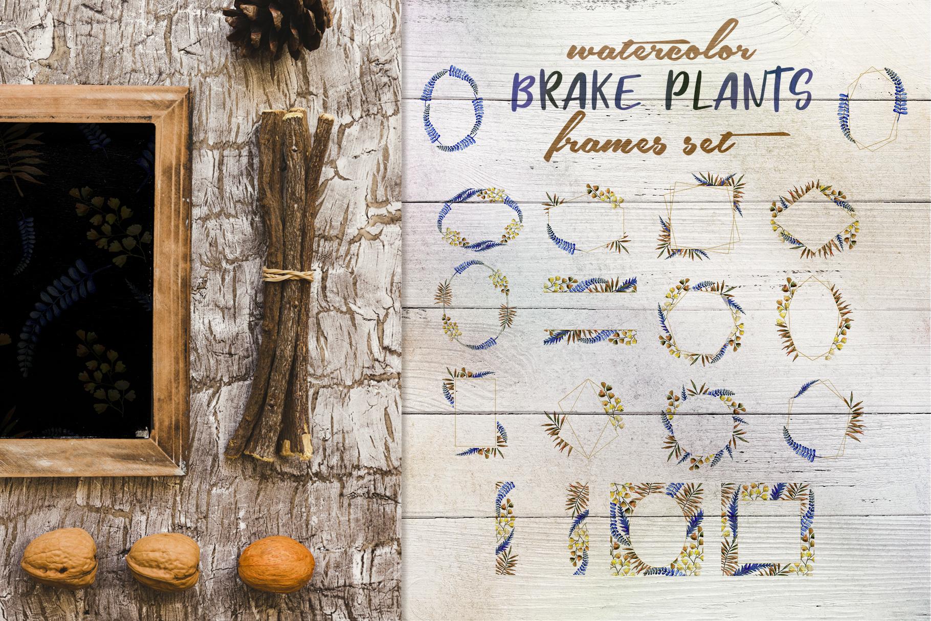 Brake plants PNG watercolor set example image 5