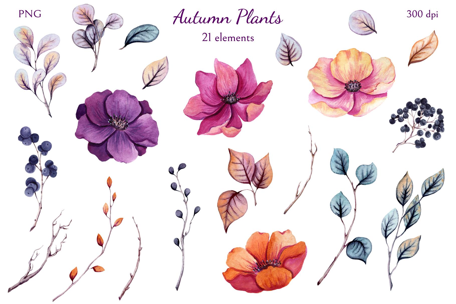 Autumn Plants example image 2