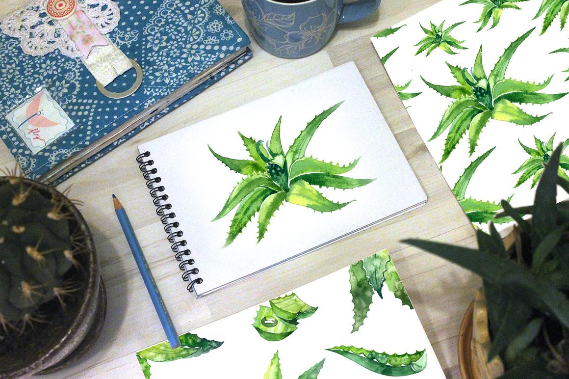 Watercolor aloe vera set example image 2