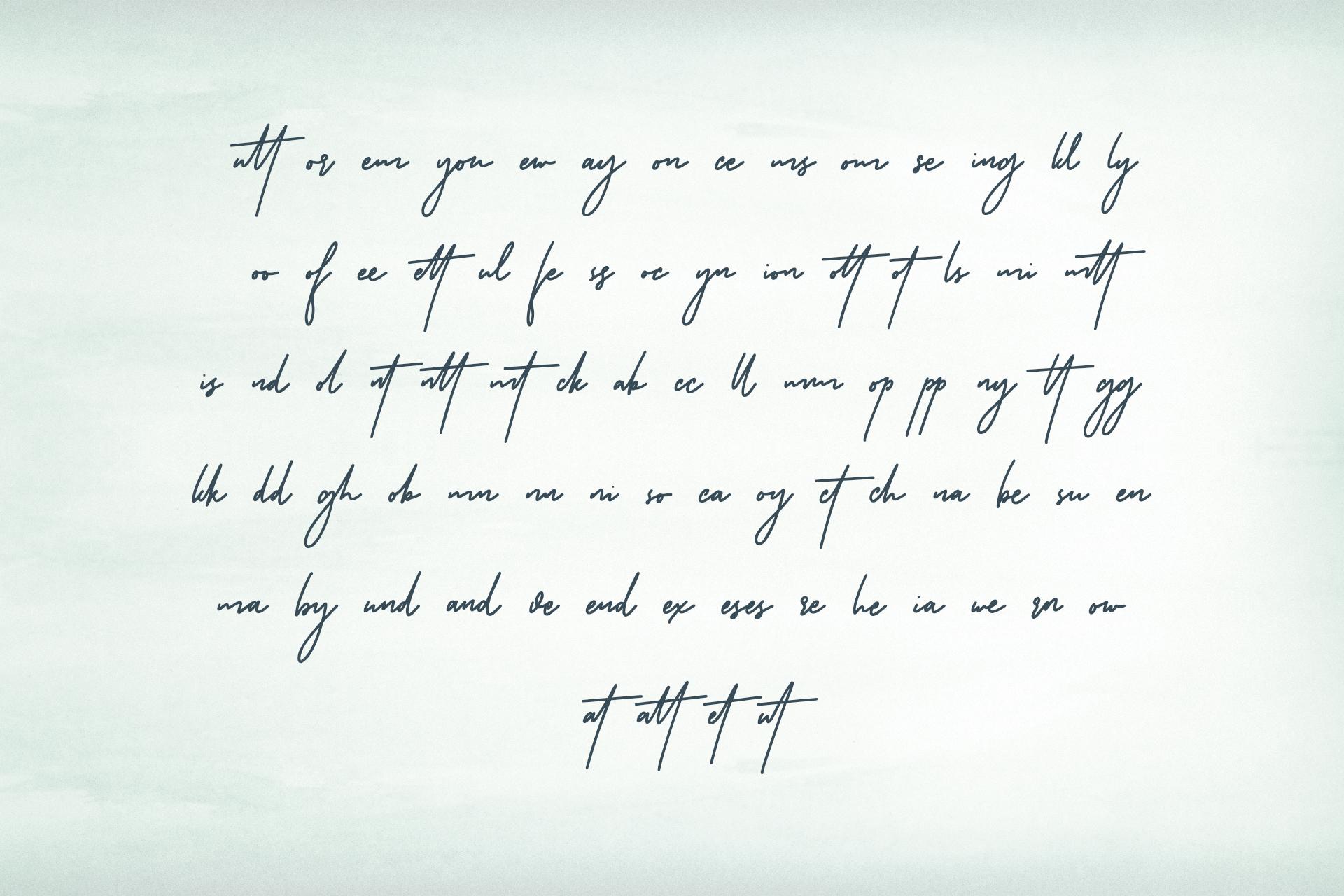 Riverstar Signature Font example image 10