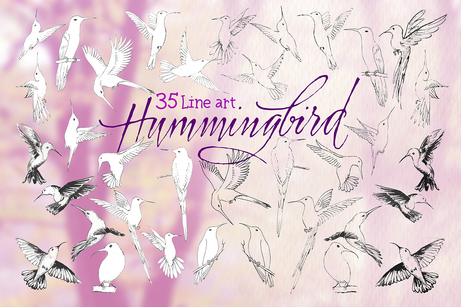 hummingbirds & tropical flowers watercolor clipart example image 6