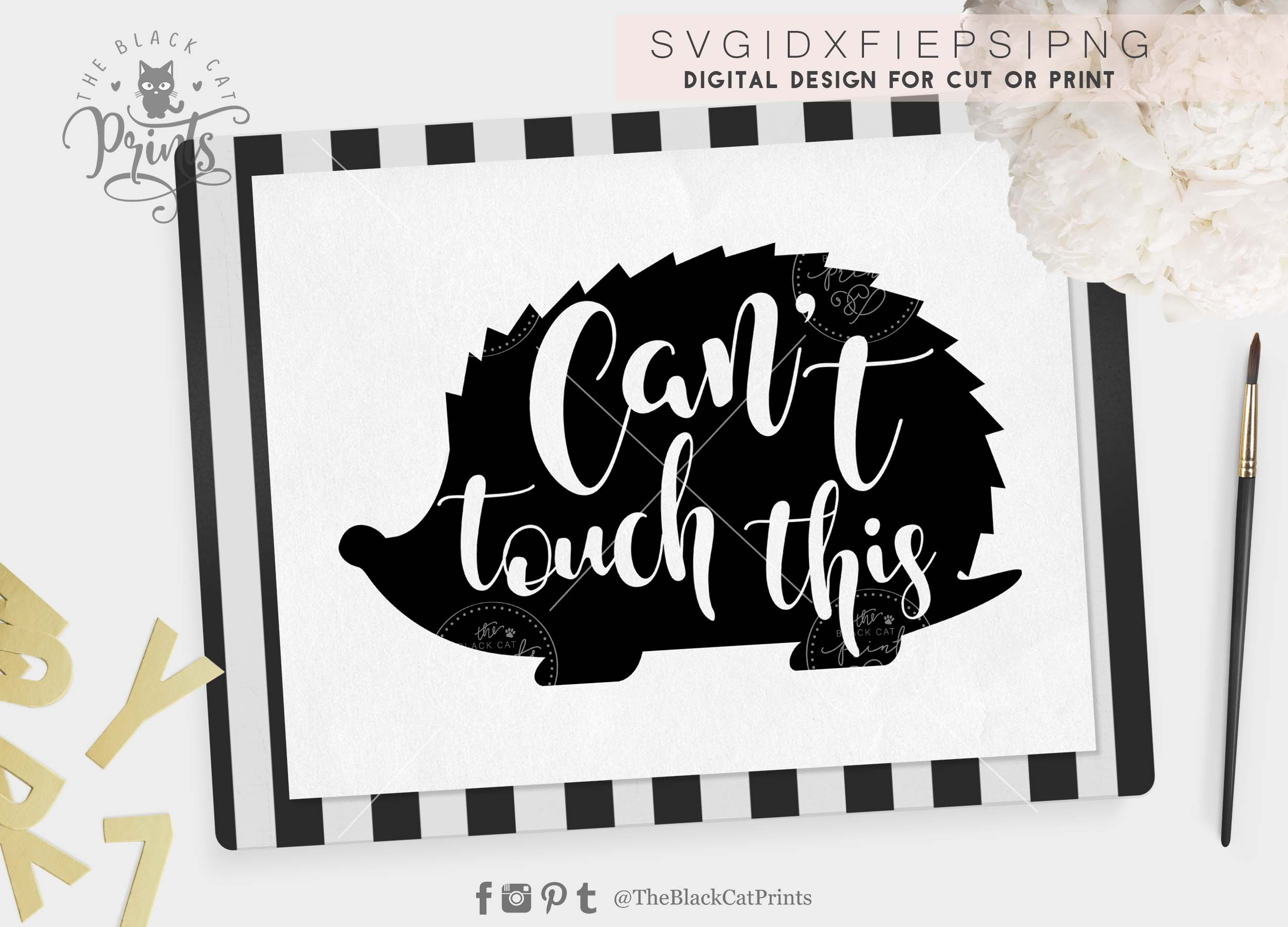 Can T Touch This Hedgehog Svg Png Eps Dxf 21674 Cut Files Design Bundles