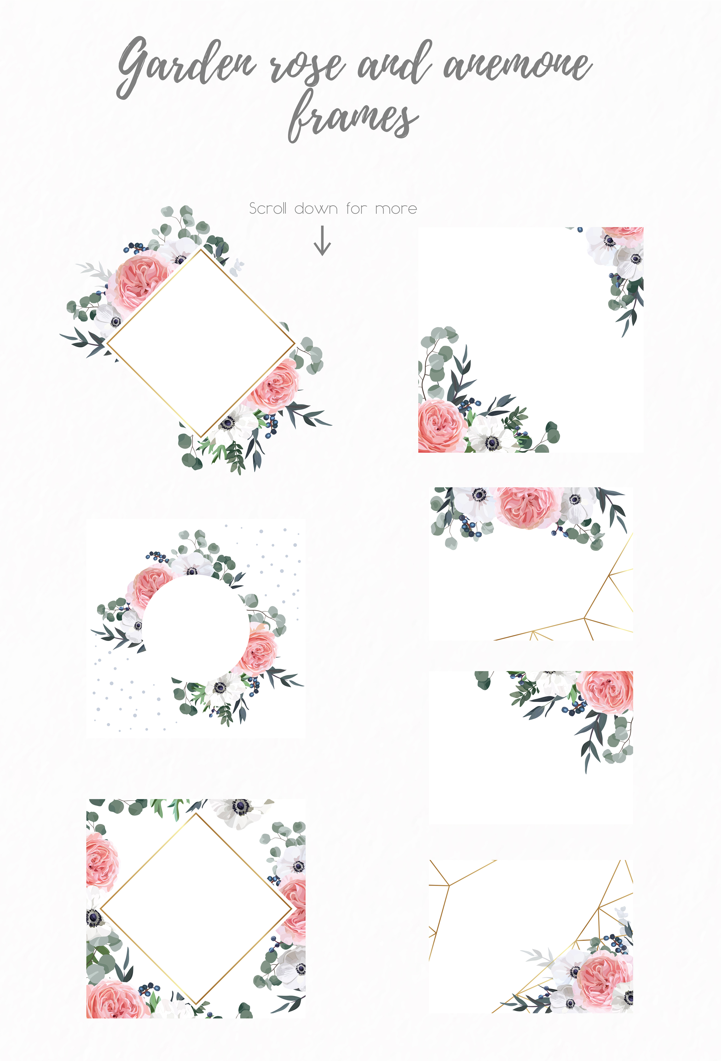 Garden Rose and Anemone - floral vector set example image 6