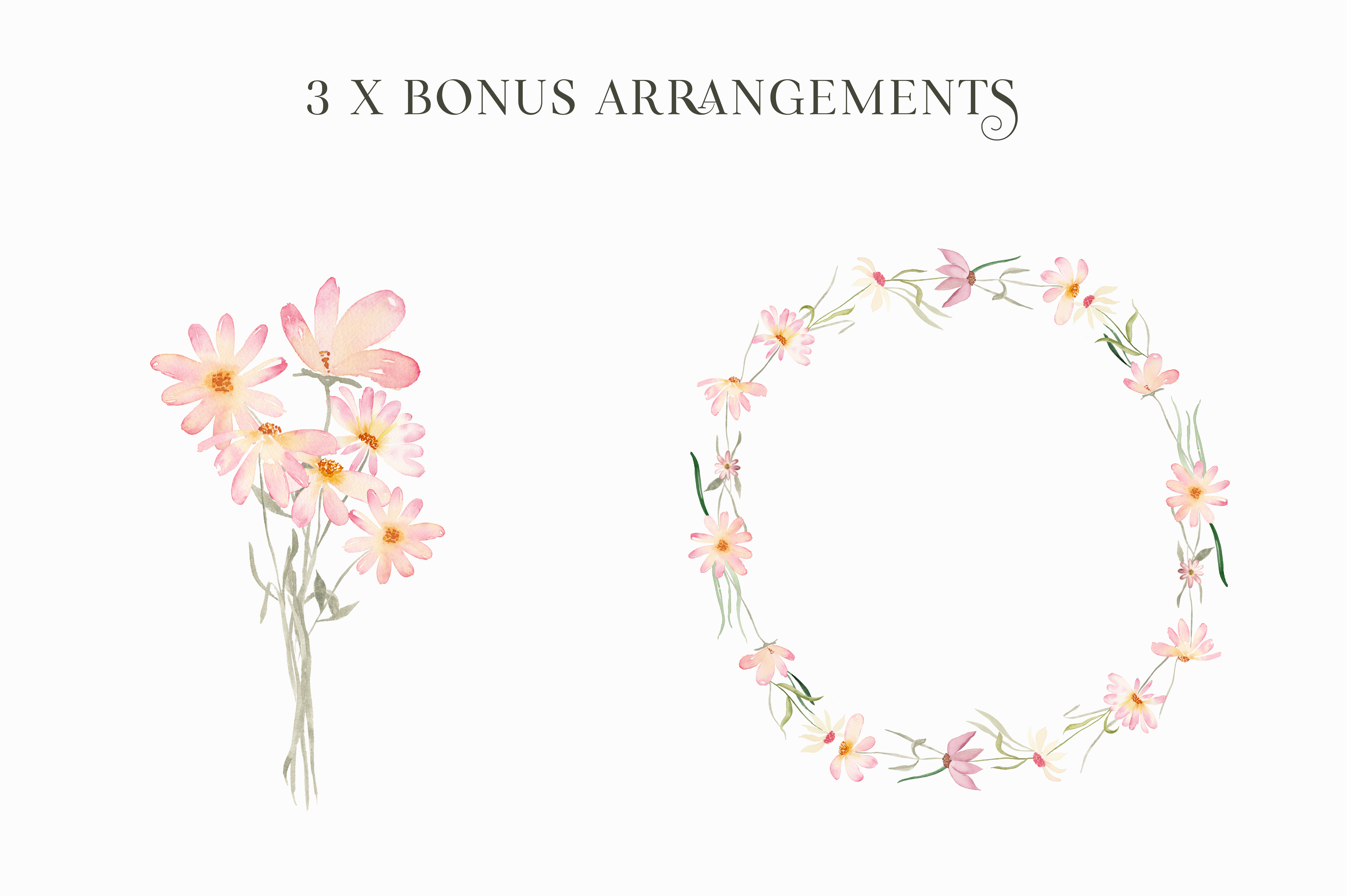 Watercolor Floral Clipart - Daisy Belle example image 5