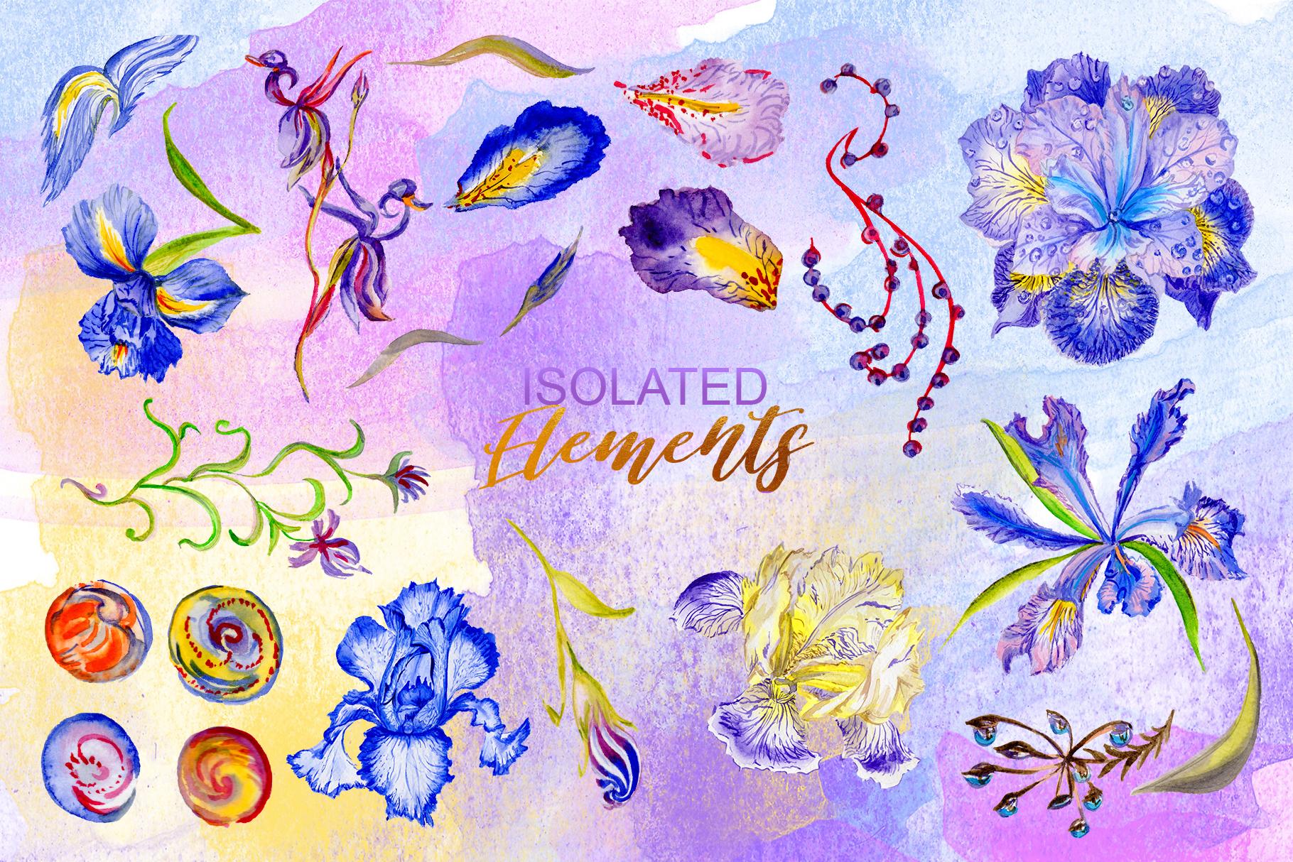 Iris blue Watercolor png example image 4