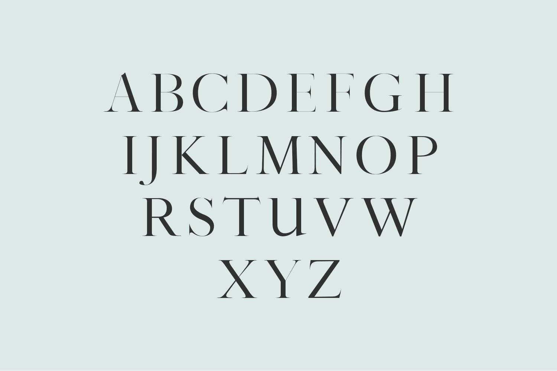 Sharis Serif Typeface example image 2
