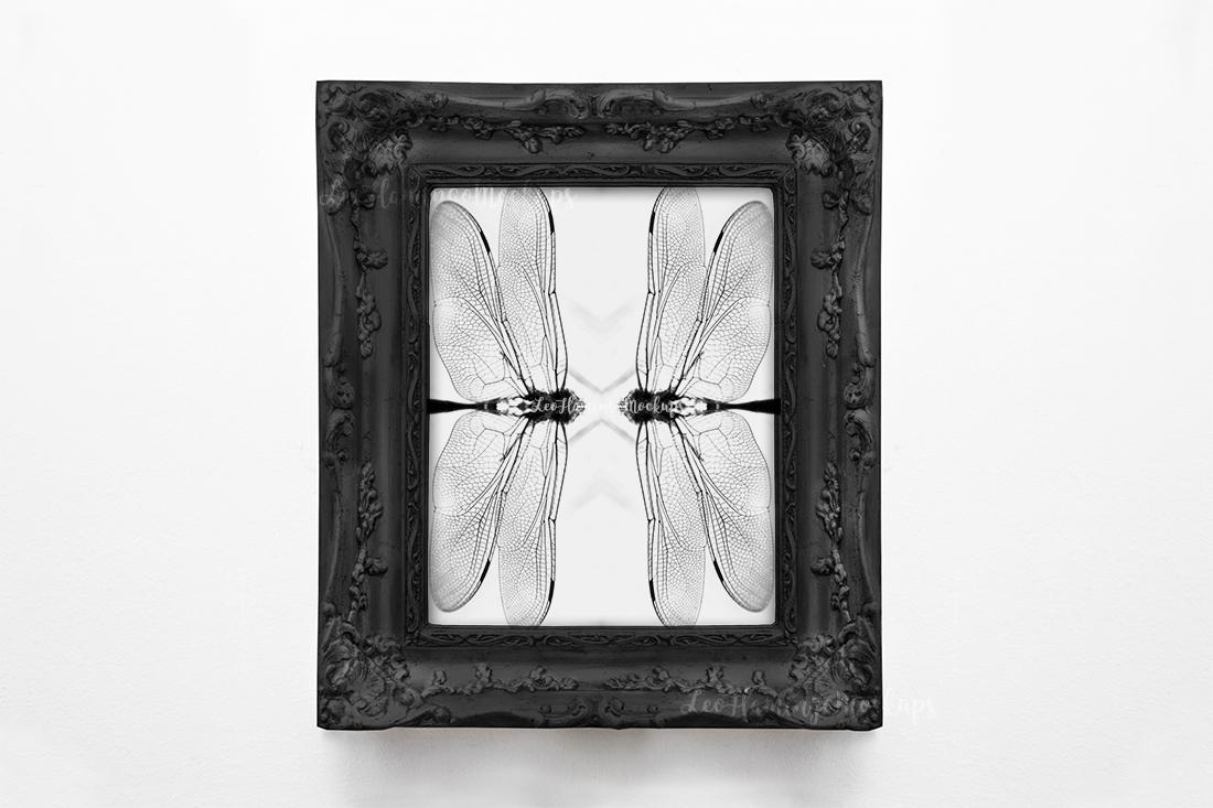 Vintage black frame mockup, Antique 8x10 picture frame mock example image 4