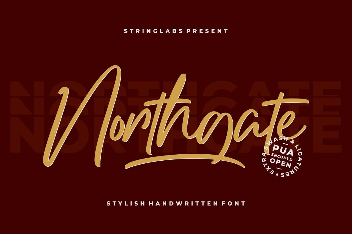 Northgate - Stylish Handwritten Font example image 1