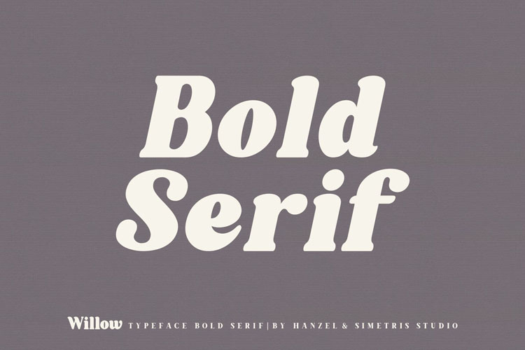 Willow. Typeface Bold Serif example image 7
