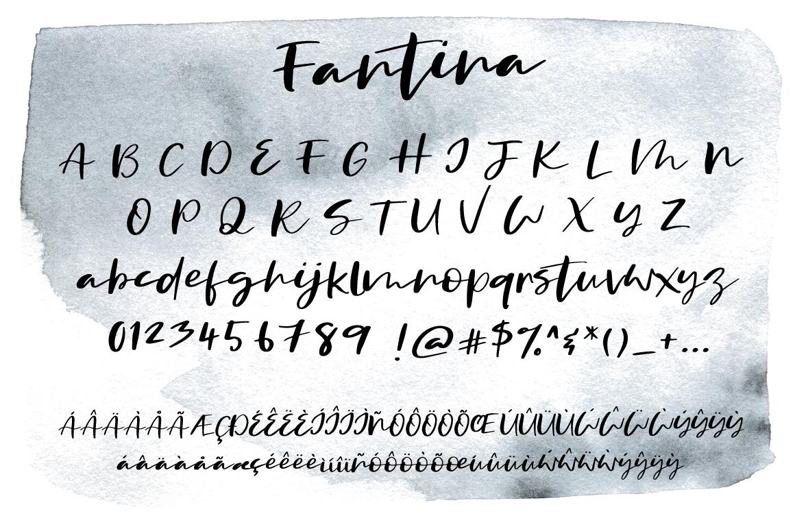 Fantina Script Font example image 4