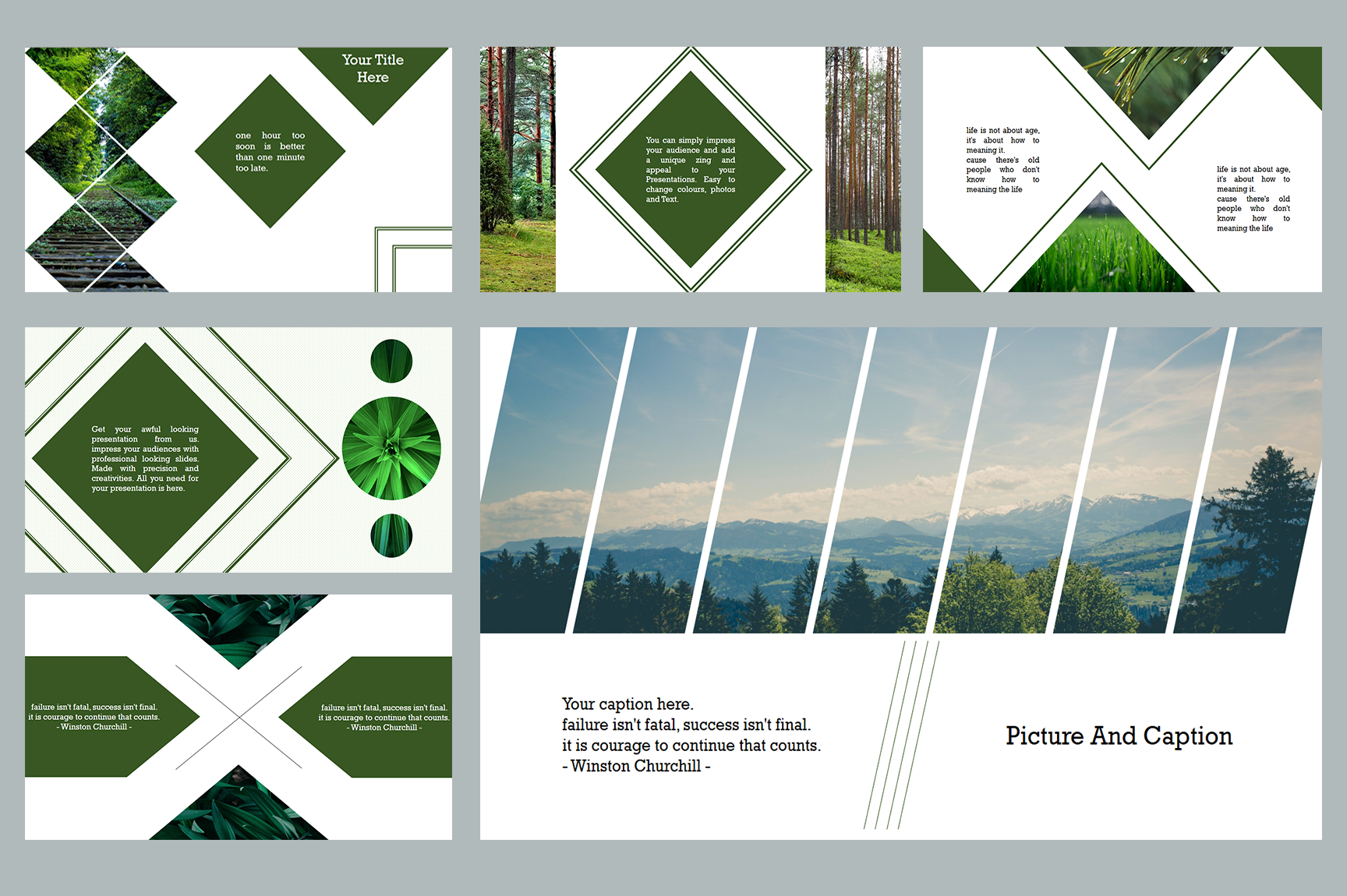 Nature PowerPoint Presentations example image 6
