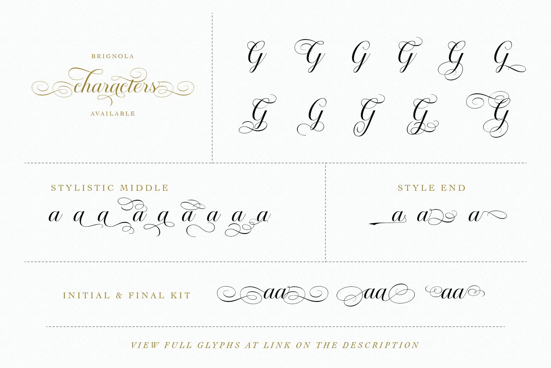 Brignola Elegant Calligraphy example image 2