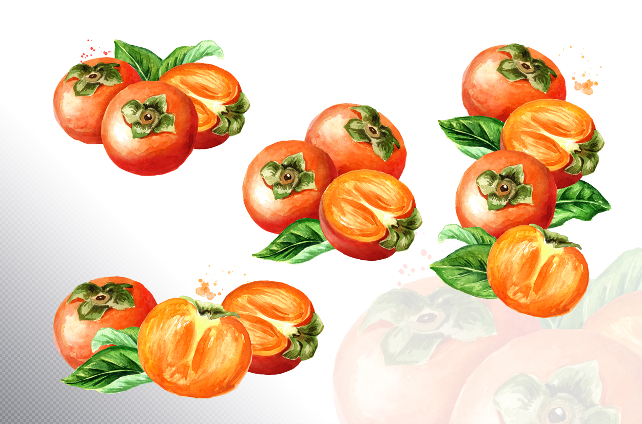 Persimmon. Watercolor set example image 5