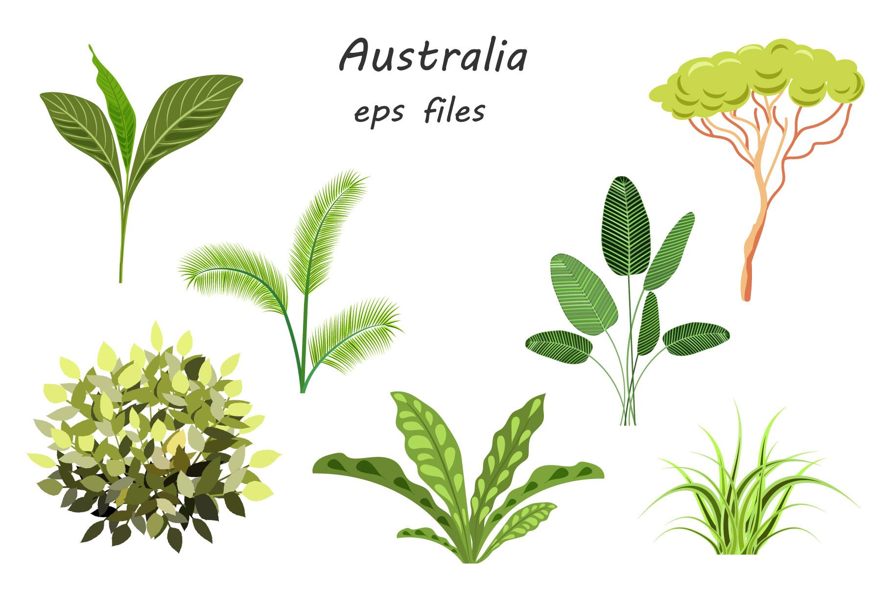 Australian Animals example image 6