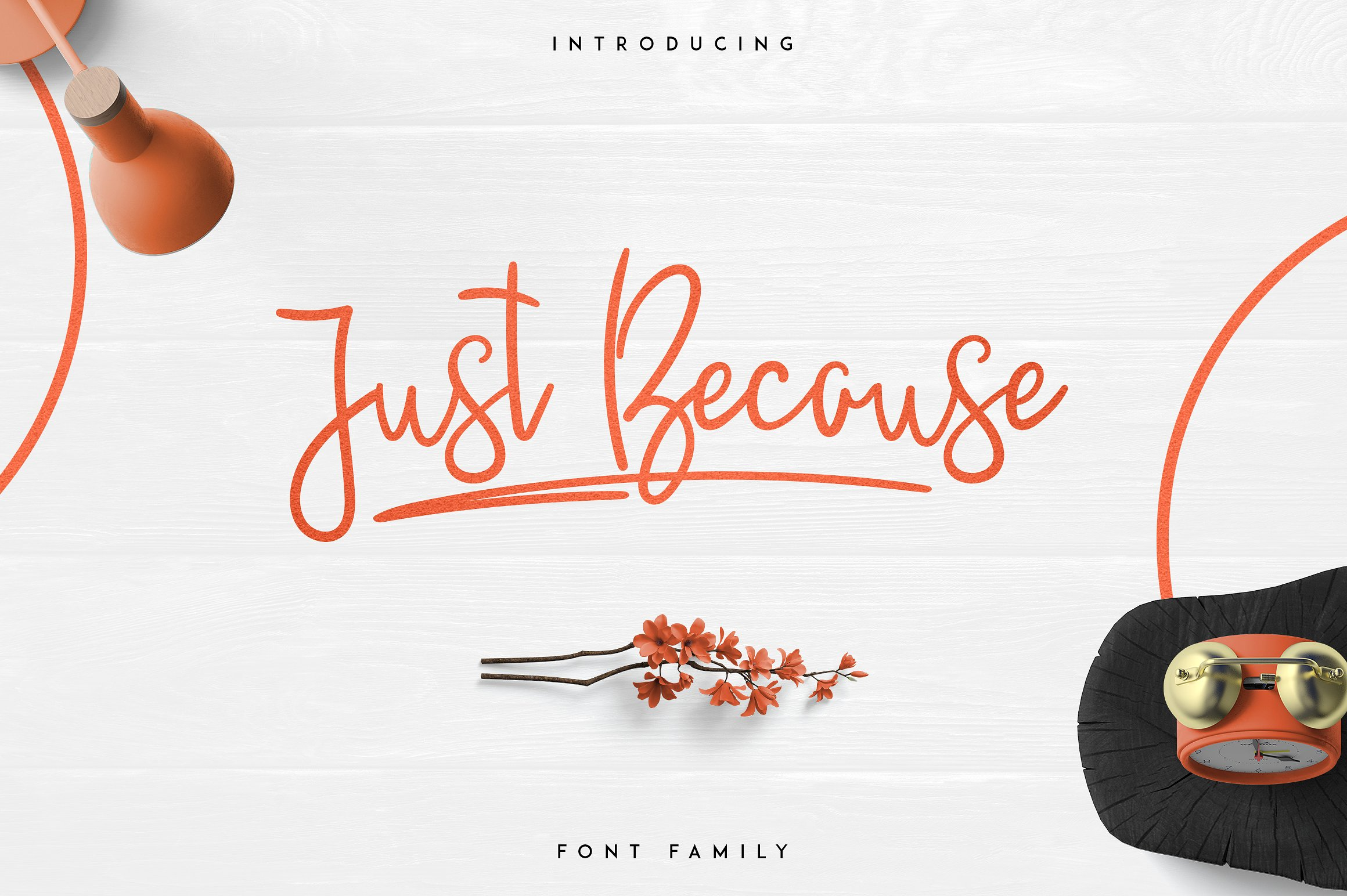 Massive Font Bundle - 197 fonts example image 25