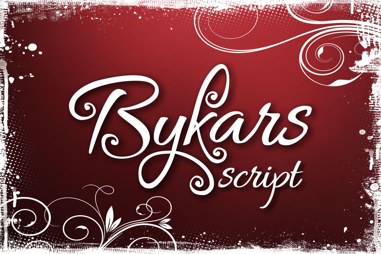 Bykars example image 1