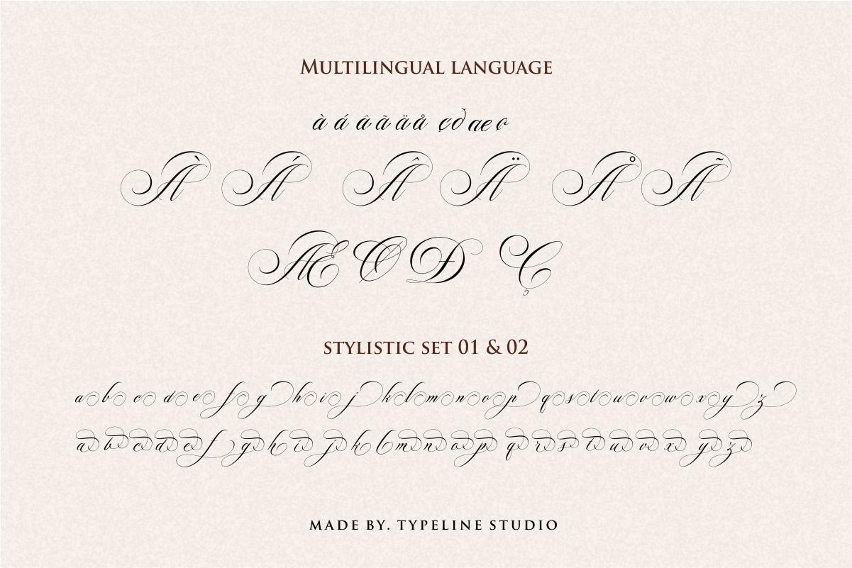 Switzerland Elegant Stylish Calligraphy Script example image 10